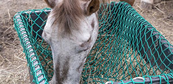 Slowfeeder paarden