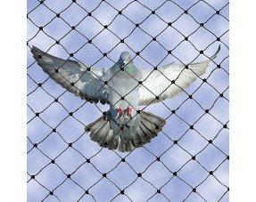 Vogelnetten