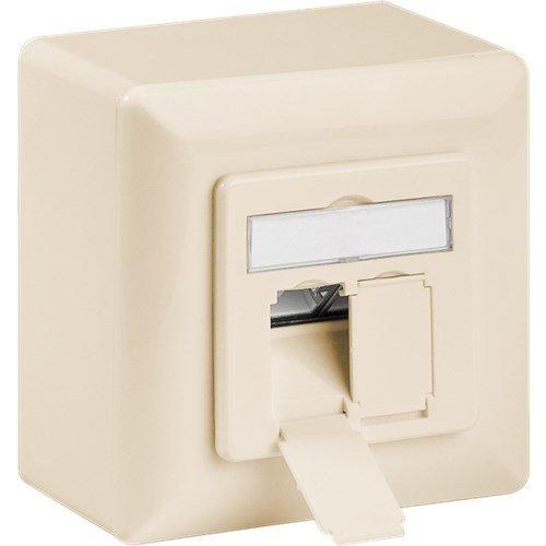 CAT 6a Universaldose inkl. Aufputzmontage-Rahmen<br>Beige 2x RJ45 Netzwerkdose, geschirmt