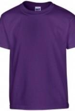 100% katoenen Fair Trade T-shirts (met korte mouw en ronde hals)