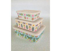 "Lunch Boxes ""Butterflies & Beetles"""