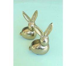 Stoer bronskleurig konijn | Diga Colmore