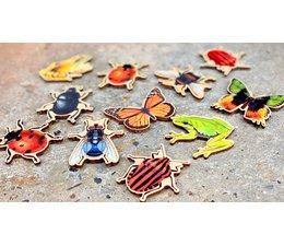 Fraaie insecten magneten, diversen