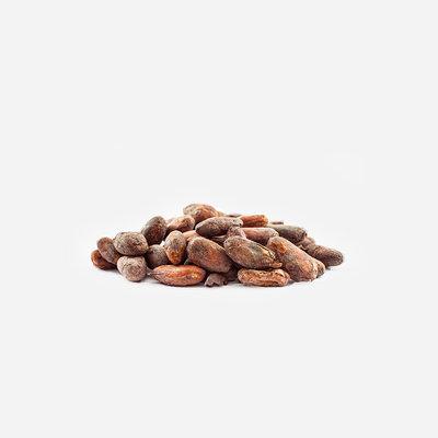 IDorganics Cacaobeans*- raw