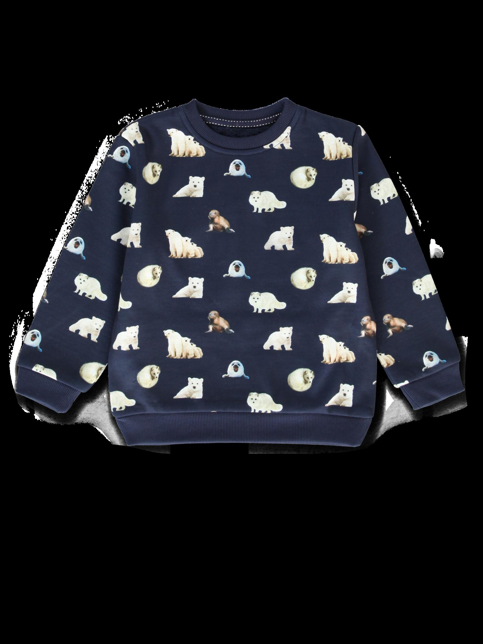 All Brands   Winterproducts Small Boys   Sweatshirt   12 pcs/box