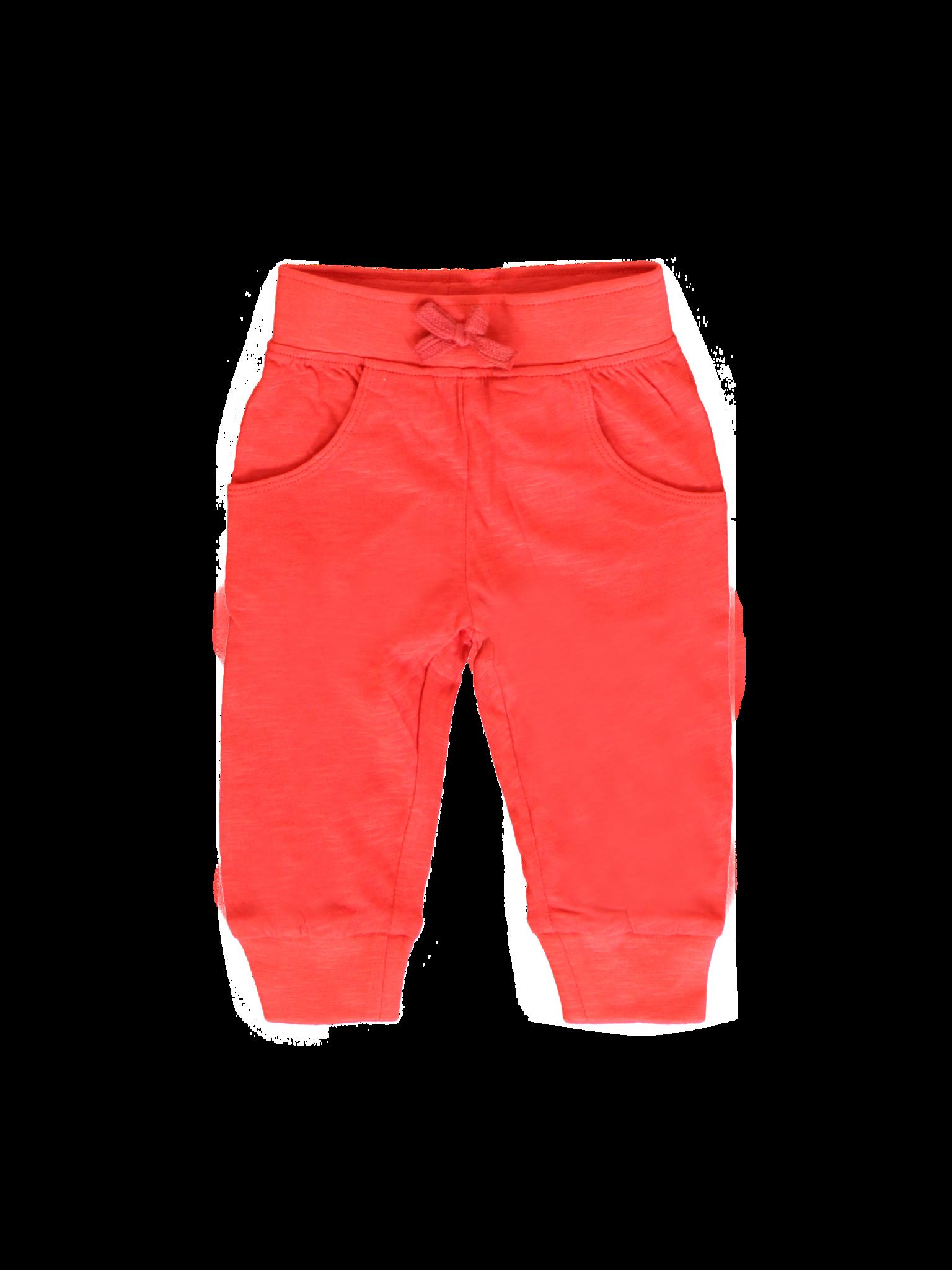 All Brands | Summerproducts Baby | Jogging Pant | 12 pcs/box