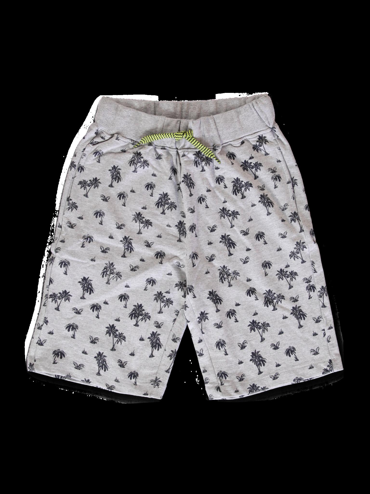 All Brands | Summerproducts Teen Boys | Bermuda | 12 pcs/box