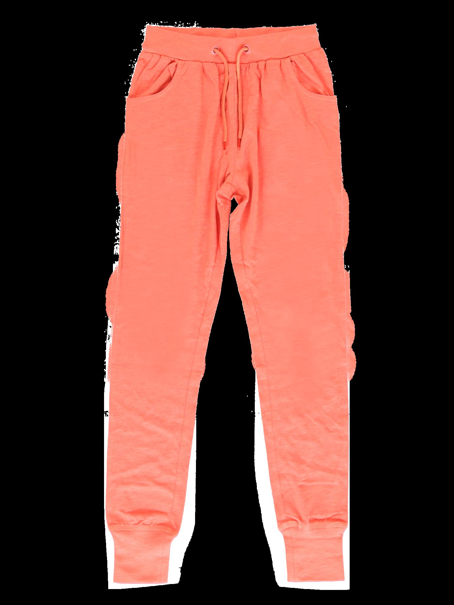 All Brands | Summerproducts Teen Girls | Jogging Pant | 24 pcs/box