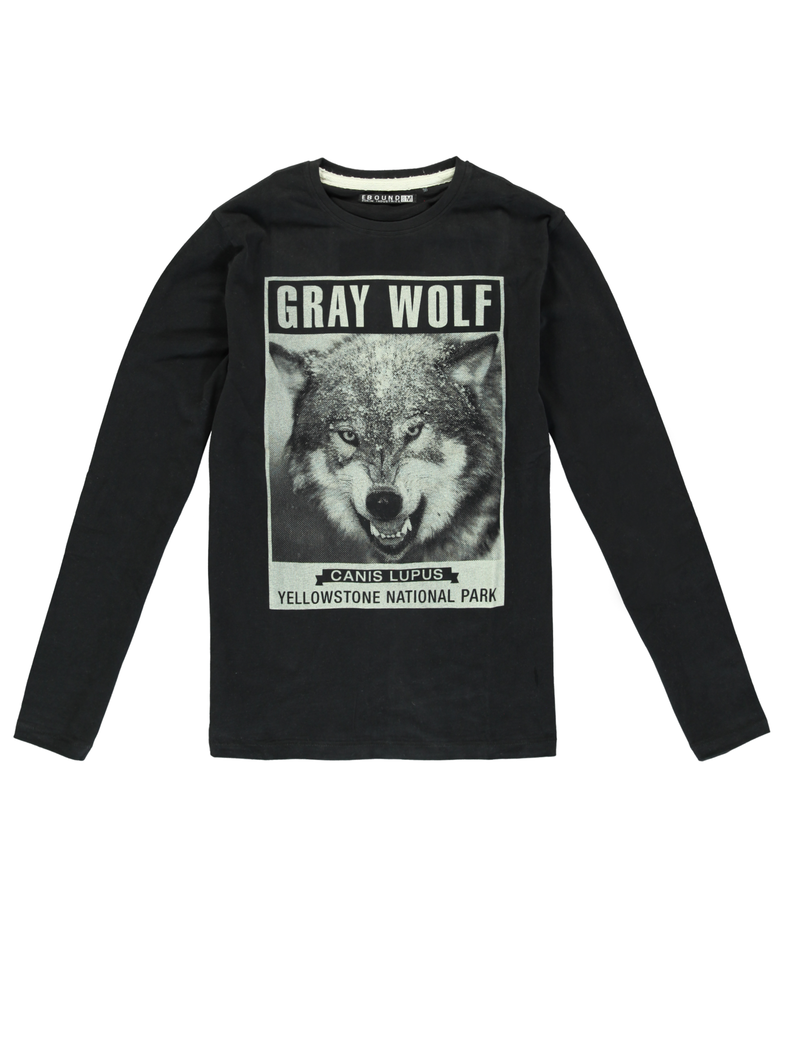 All Brands | Winterproducts Men | T-shirt | 24 pcs/box