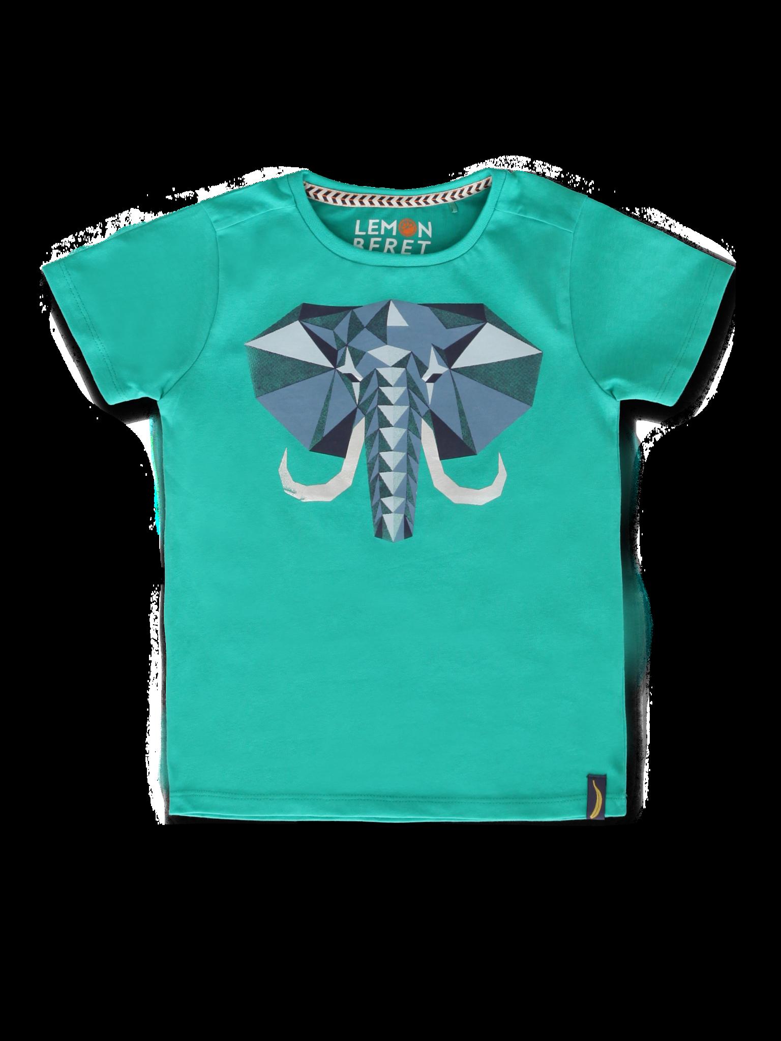 All Brands | Summerproducts Small Boys | T-shirt | 12 pcs/box