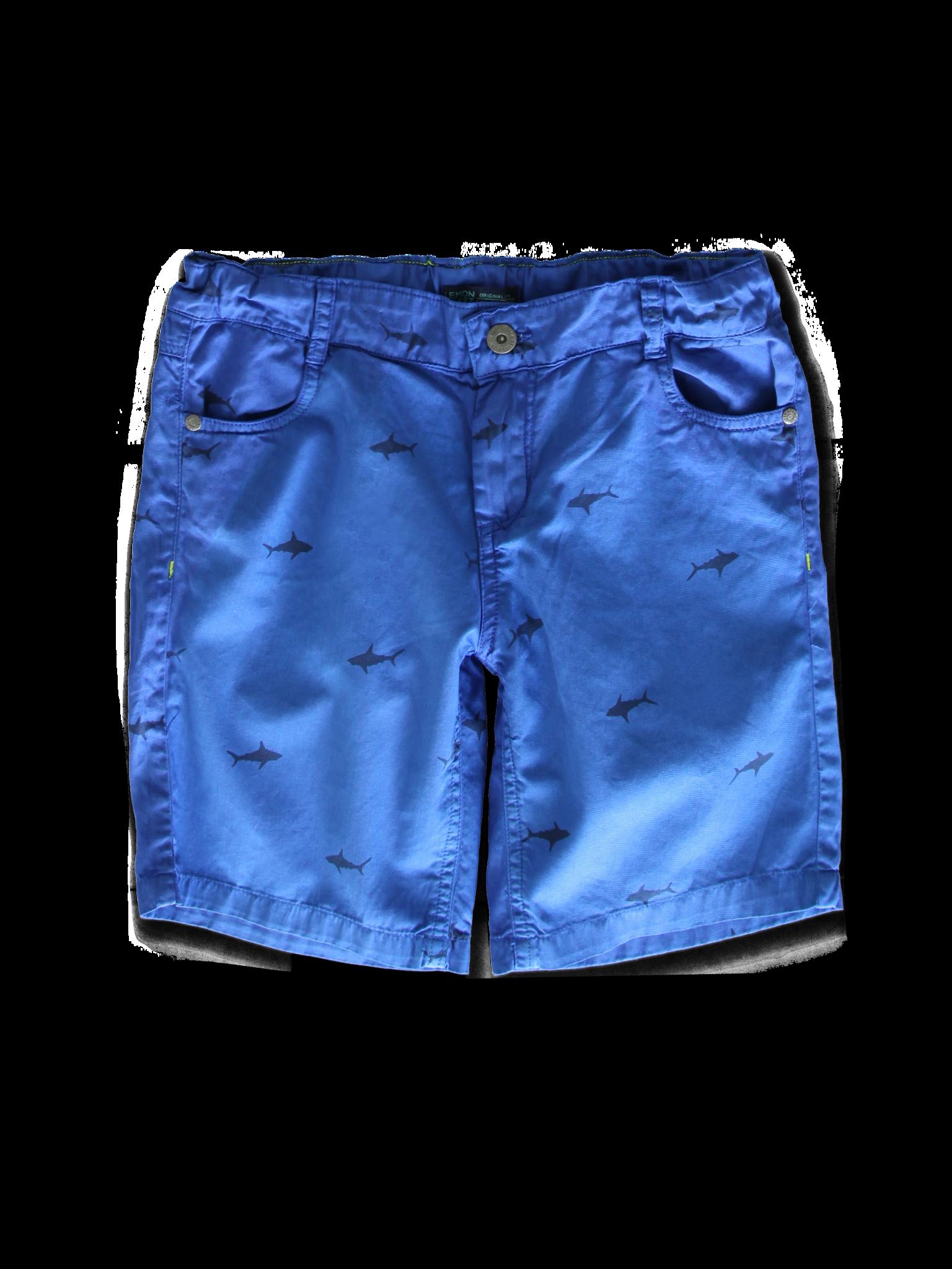 Lemon Beret | Summer 2020 Teen Boys | Bermuda | 10 pcs/box