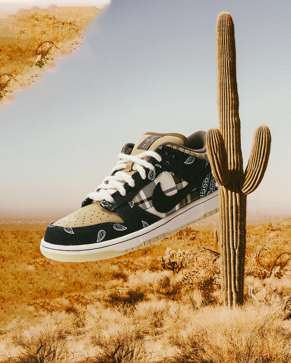 The Nike SB x Travis Scott Dunk Low