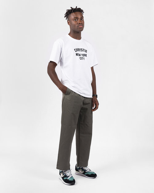 Carhartt Carhartt Alder Pant Cotton Moor Stone Washed