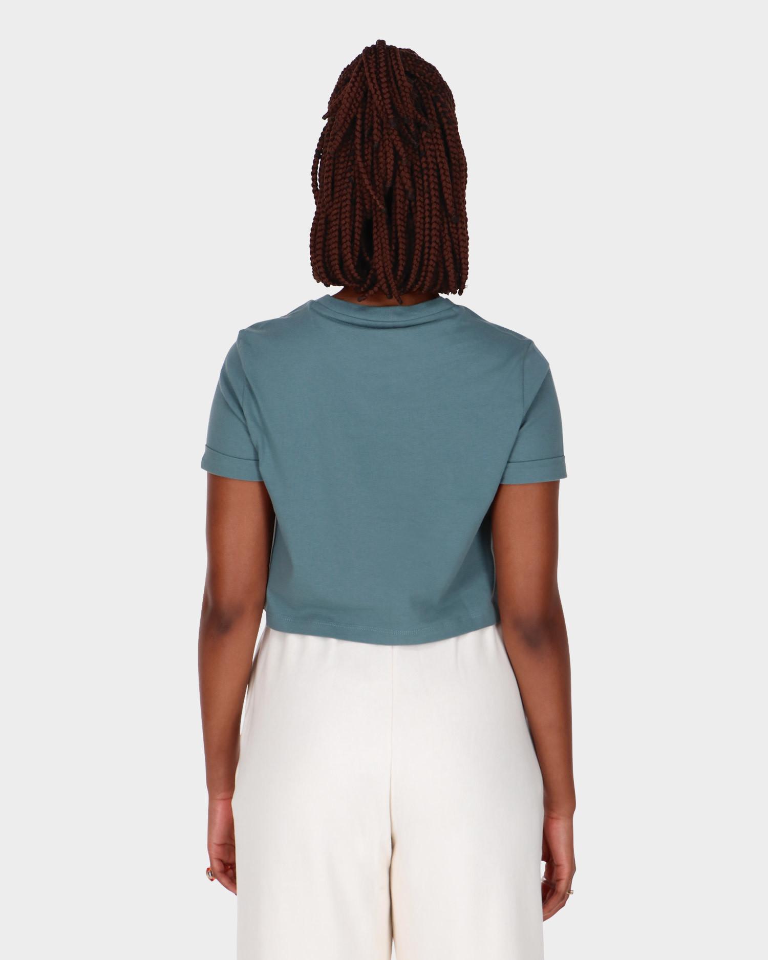 Adidas Crop Top Hazy Emerald
