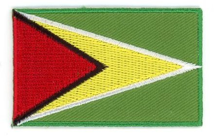 vlag patch Guyana