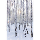Sweet Living Canvas schilderij Winter Wonderland - 60xH90 cm