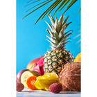 Sweet Living Canvas schilderij Tropical
