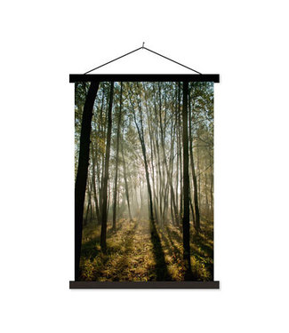 Sweet Living Schoolplaat Sunrise Forest - 60xH90 cm