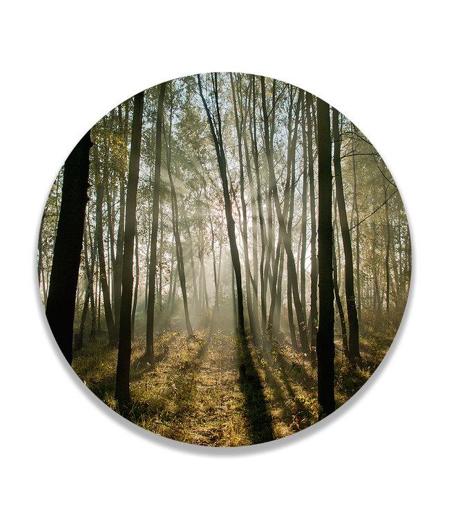 Sweet Living Wandcirkel Sunrise Forest