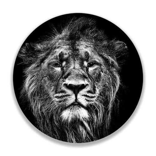 Sweet Living Wandcirkel Impressive Lion