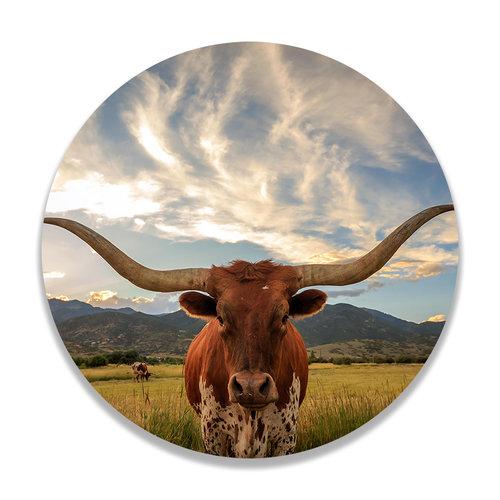 Sweet Living Wandcirkel Texas Longhorn