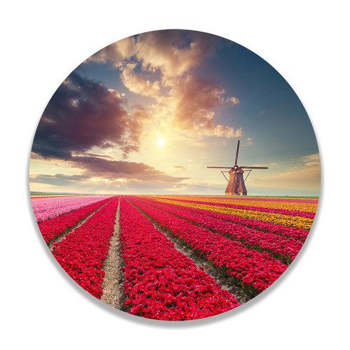 Sweet Living Wandcirkel Hollands Tulpenveld