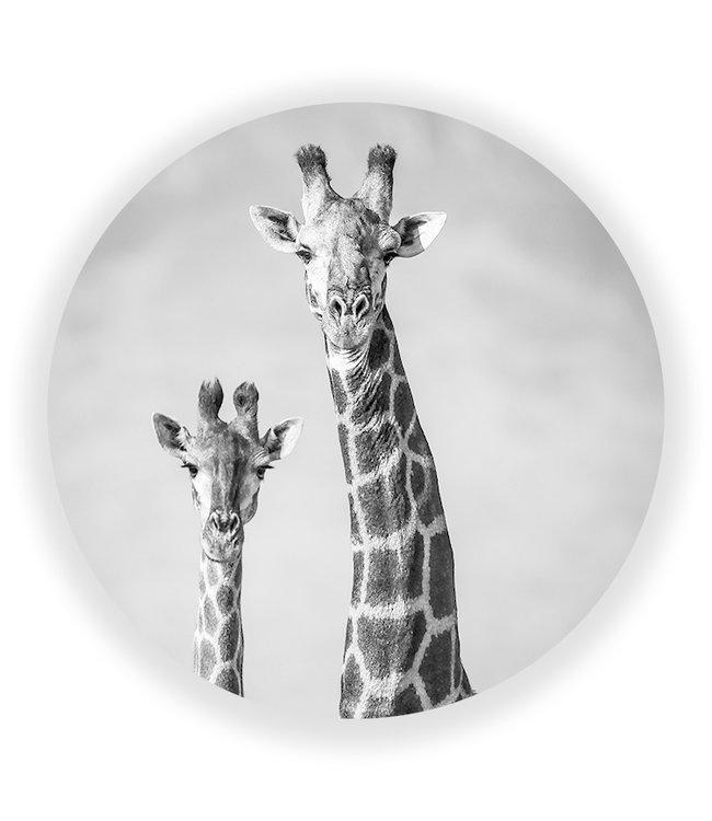 Sweet Living Wandcirkel Giraffenpaar