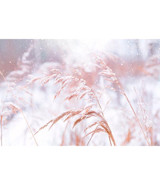 Sweet Living Schilderij Besneeuwd Gras