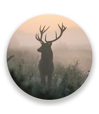 Sweet Living Wandcirkel Edelhert in de Mist