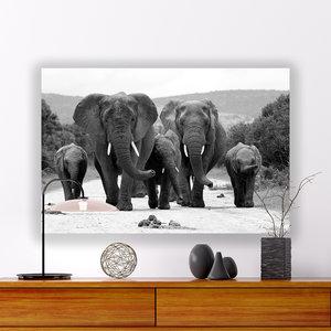 Wilde dieren schilderij