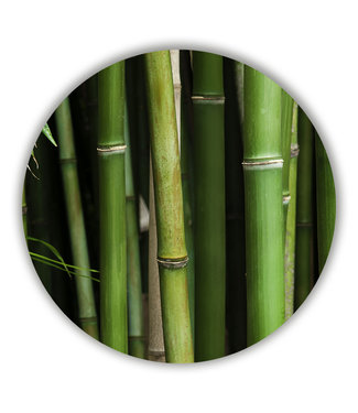 Sweet Living Wandcirkel Bamboe