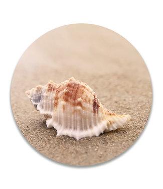 Sweet Living Wandcirkel Schelp op het strand