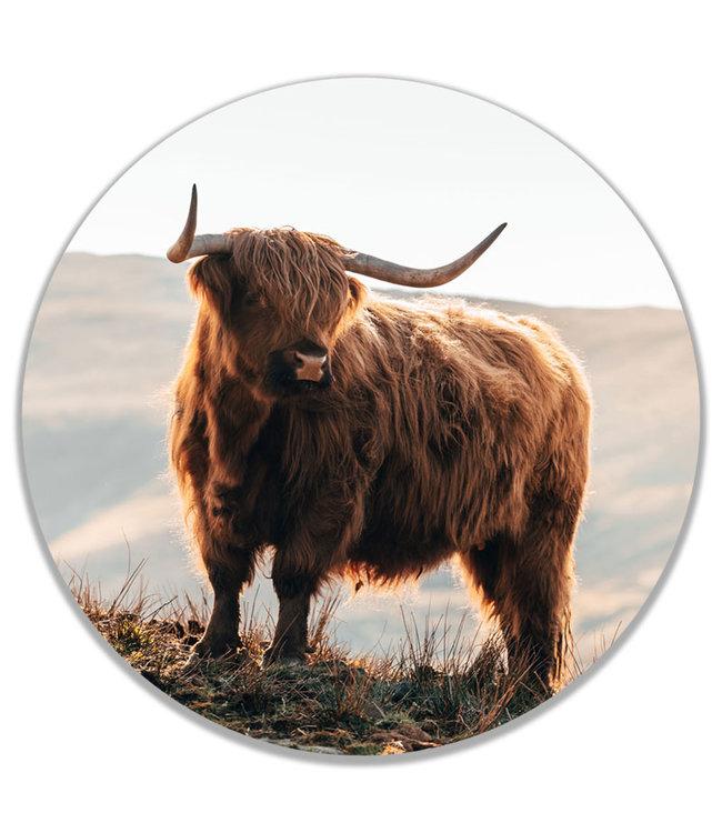 Sweet Living Wandcirkel Scottish Highlander