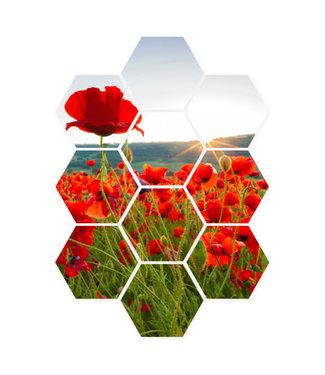 Sweet Living Hexagon Klaprozen in de zon - 58xH79 cm