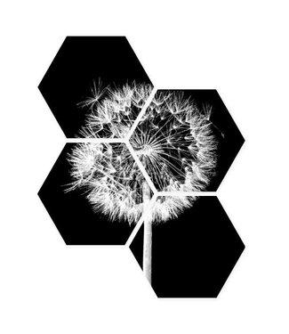 Sweet Living Hexagon Zwartwitte Paardenbloem - 40xH50 cm
