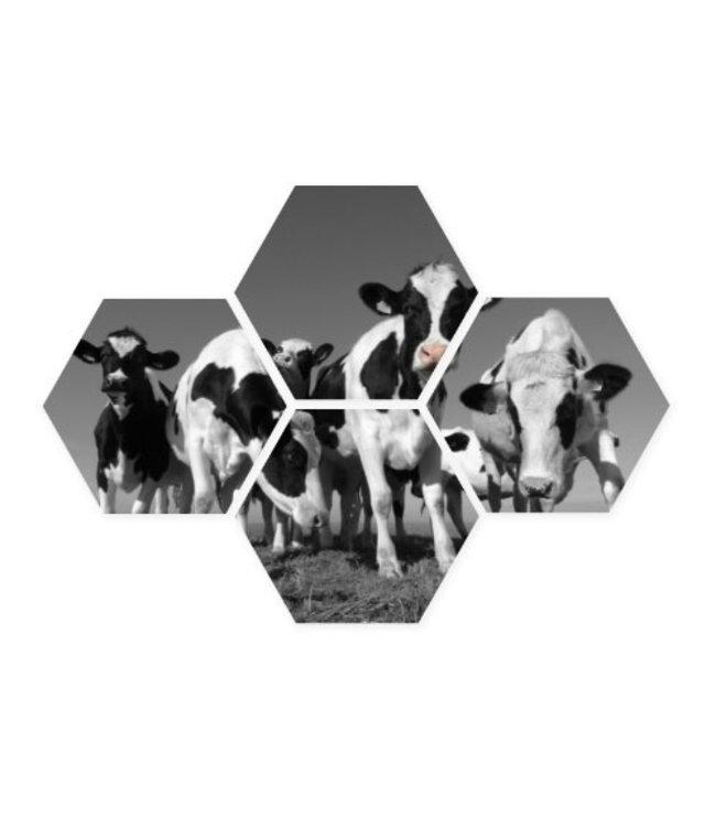 Sweet Living Hexagon Vrolijke Koeien - 58xH39 cm