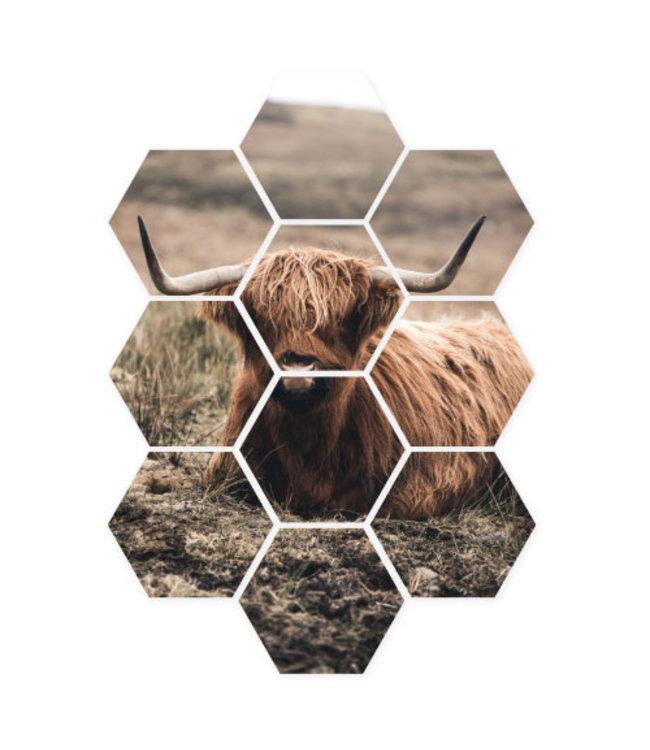 Sweet Living Hexagon Hooglander Portret - 58xH79 cm