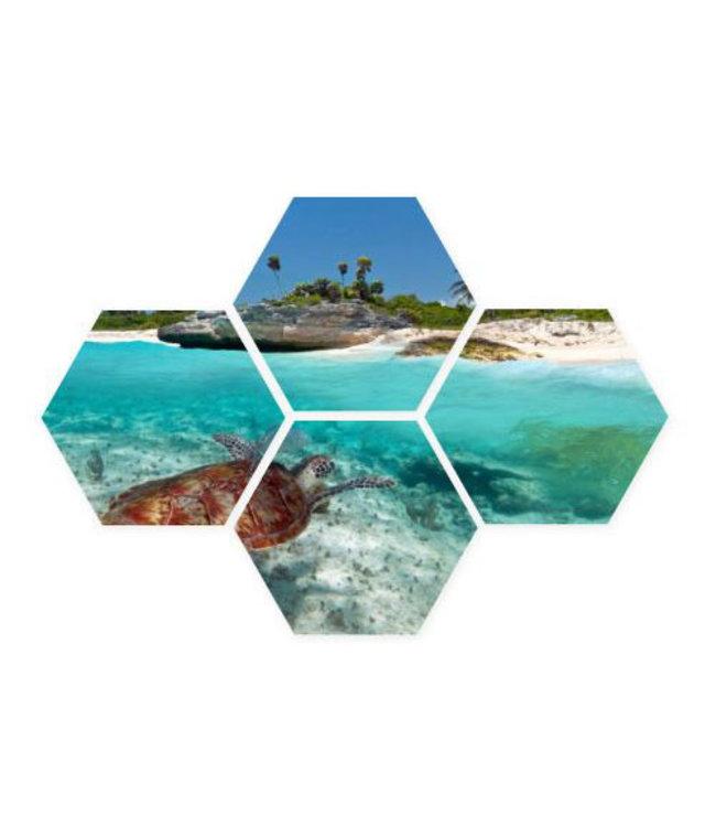 Sweet Living Hexagon Sea World - 40xH50 cm