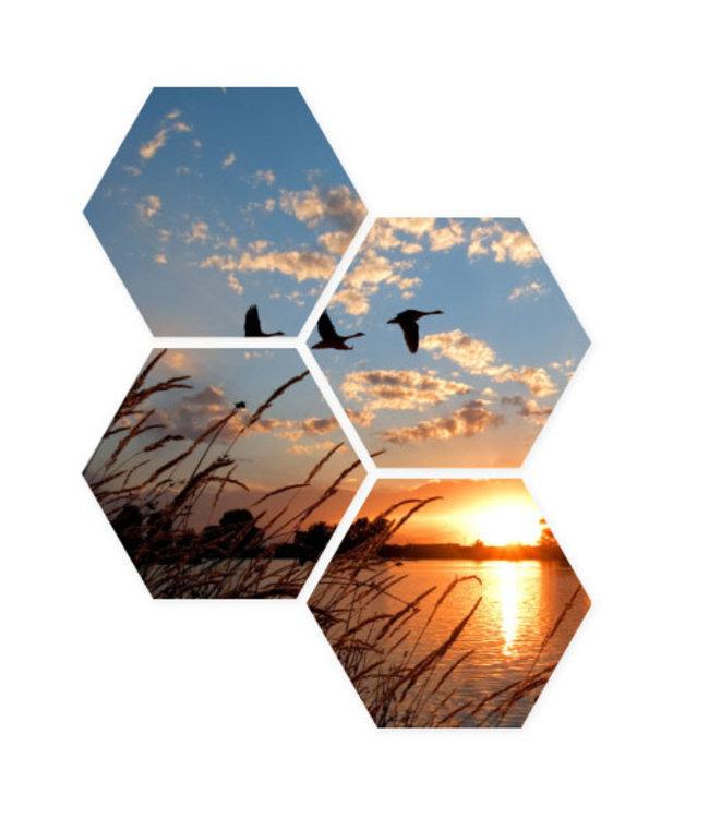 Sweet Living Hexagon Vliegende Ganzen - 40xH50 cm