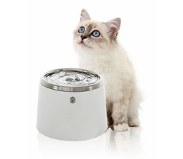 Cat it Drinkfontein Stainless Steel