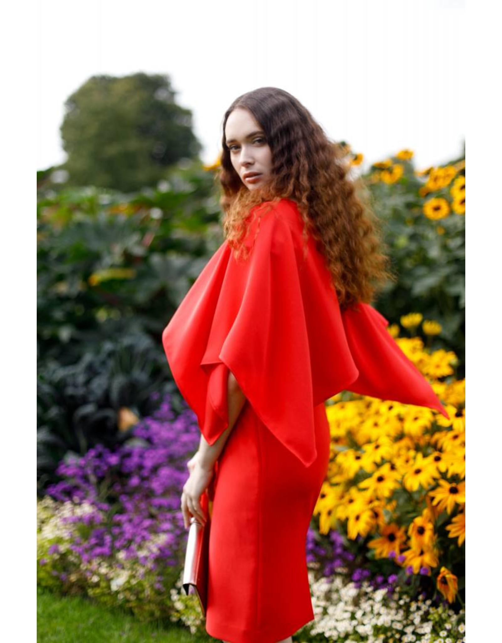 Aideen Bodkin Blossom Dress/Cape