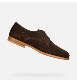 Geox Bayle Suede Shoe