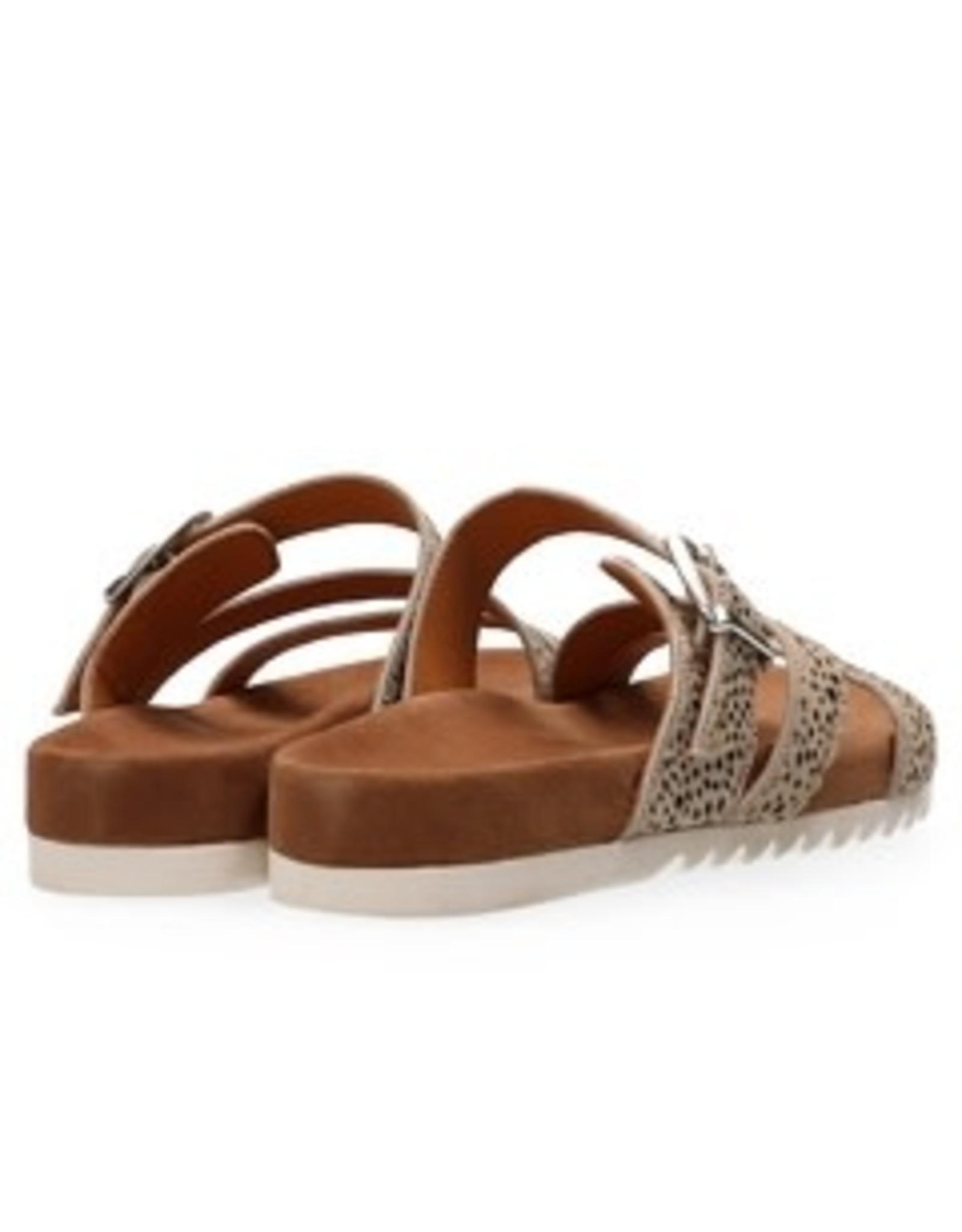 Maruti Bijou 3 Strap Sandal