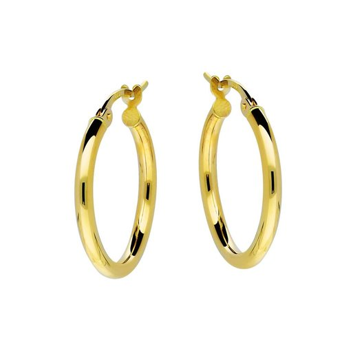 Gouden creolen gold collection - 2x19 mm