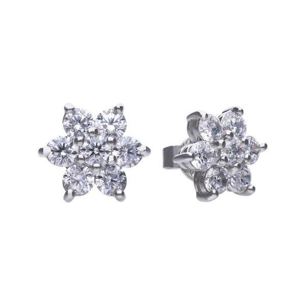 Zilveren fantasie oorknoppen diamonfire