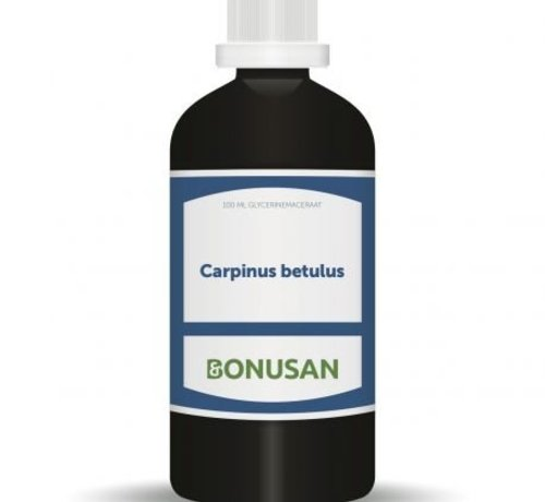 Bonusan Bonusan Carpinus betulus 100 m