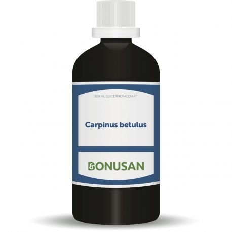 Bonusan CARPINUS BETULUS