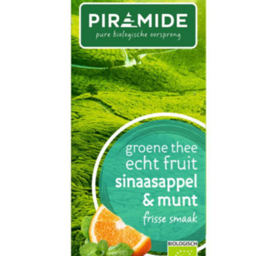 Piramide groene thee sinaasappel & munt