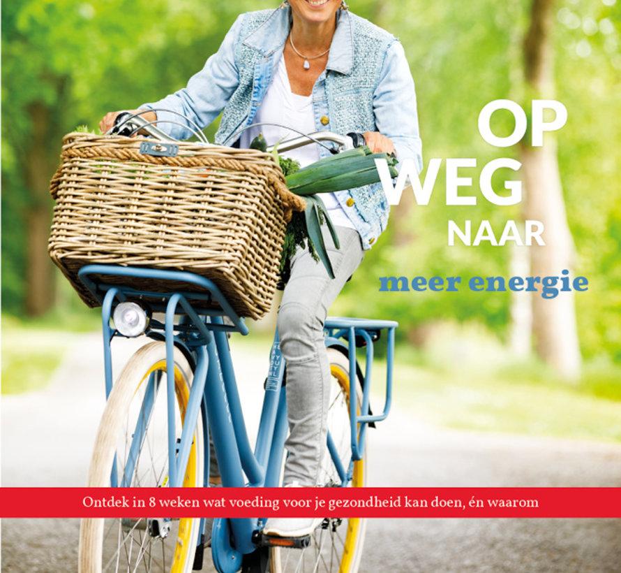 Op weg naar meer energie Rineke Dijkinga