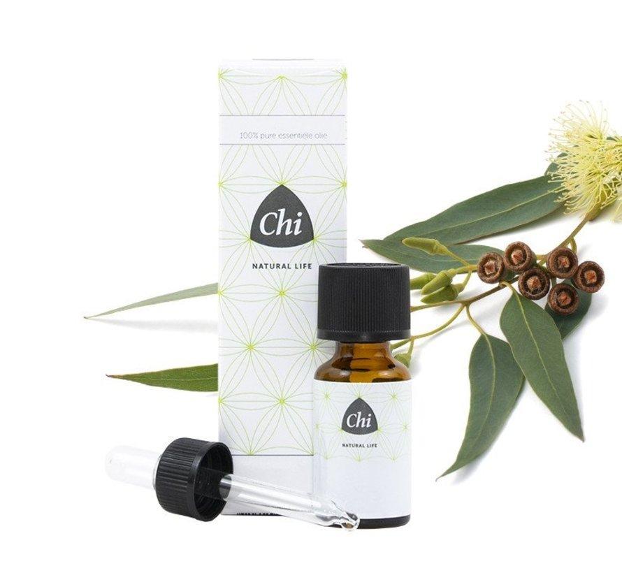Chi Eucalyptus olie, Wild 20 ml